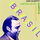 Joao Gilberto Bethania Caetano e Gil - Brasil